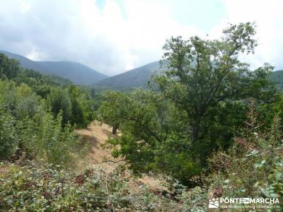 Valle del Alto Alberche;asociacion de montañismo viajes de 1 dia club de montañismo madrid